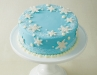 Snowflake  Winter  Wonderland Cake