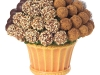 This truffle bouquet is made with fresh apple and pear, dipped in delicious chocolate, cinnamon, coconut  and almonds.