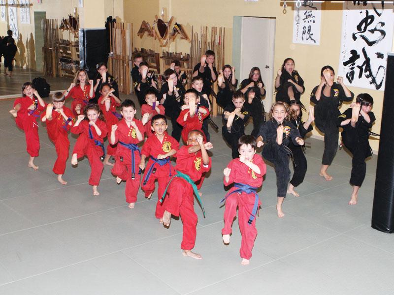 Northern Karate | City Life Vaughan Lifestyle Magazine